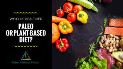 Paleo or a Plant-Based Diet?